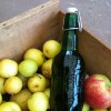 Apple Cider: A look at how to press your own