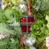CSAs: What's available in your county this season