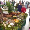 Fungi fun: Mushroom groups present annual shows