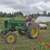Whatcom, Whidbey farm tours welcome visitors