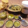 Wild about plants: Herbal gift ideas