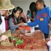 Taste Washington Day seeks farmers, producers