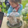 Field trip: Spring ideas  for fun family learning