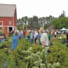 Plant Sales: Where to go this month