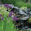 Garden, home tours offer a mix of summer sites