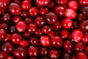 cranberries-background